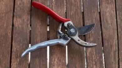 راهنمای خرید بهترین مارک قیچی باغبانی