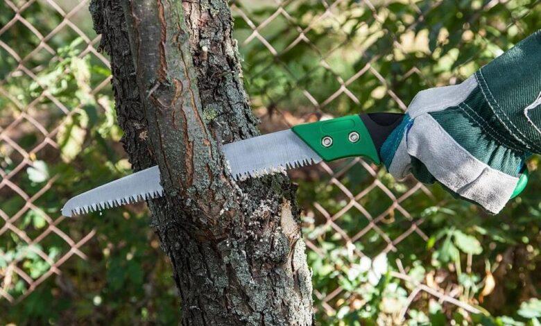راهنمای خرید بهترین اره باغبانی یا اره سامورایی ژاپنی